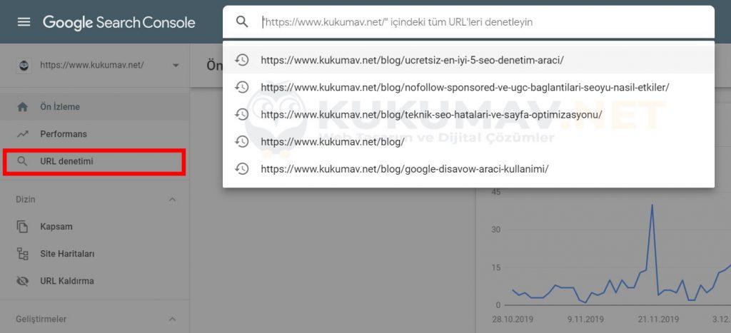 Search Console Url Denetimi