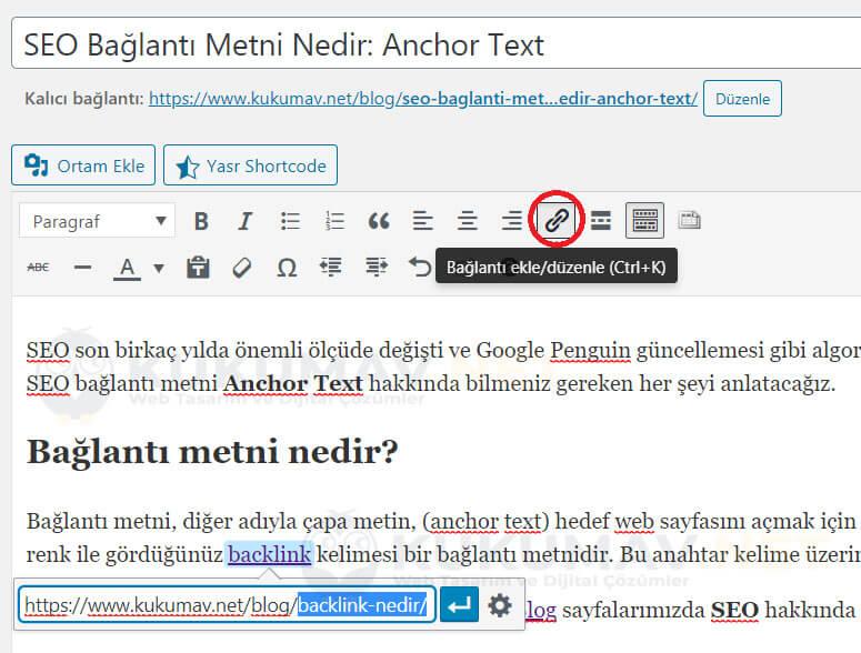 Bağlantı Metni Anchor Text
