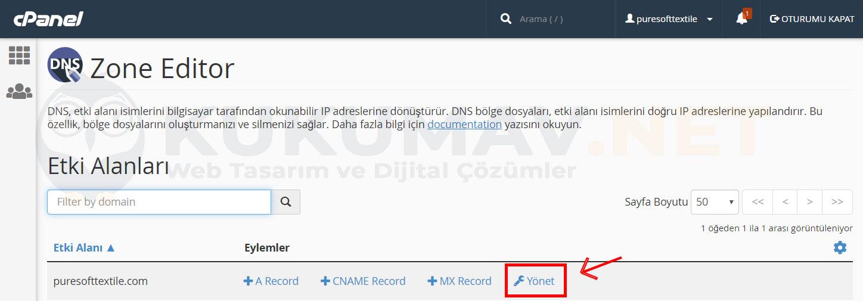Yandex Mail Kurma DNS Ayarları