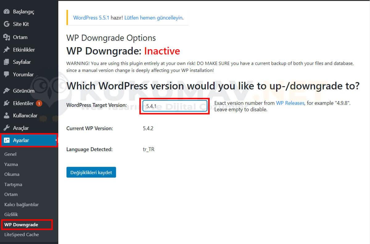 WP Downgrade eklentisi