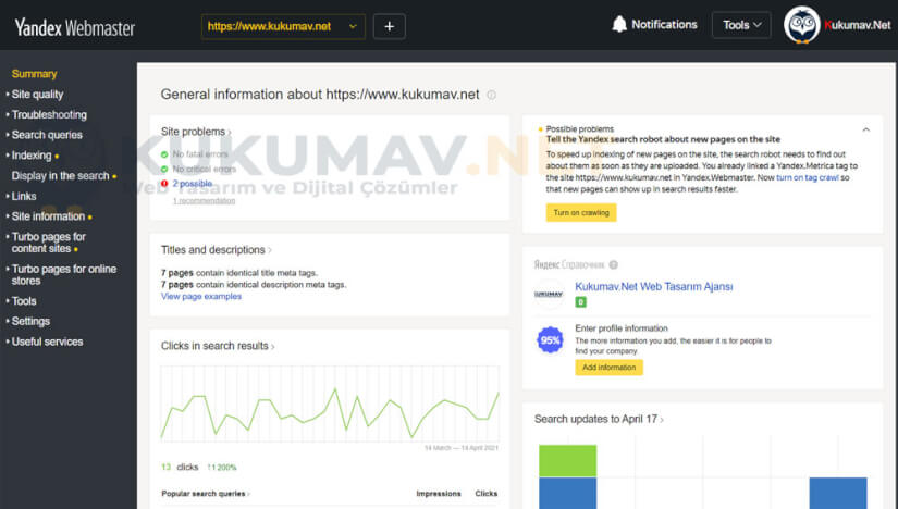 Yandex Webmaster Özet